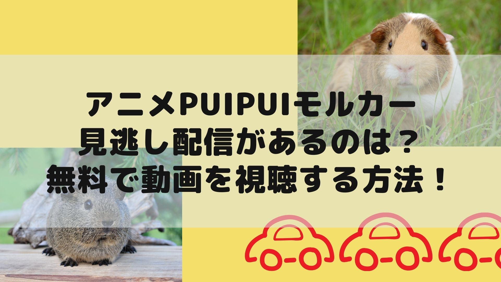 アニメPUIPUI(プイプイ)モルカーの見逃し配信があるのは?無料で動画を視聴する方法!タイトル画像