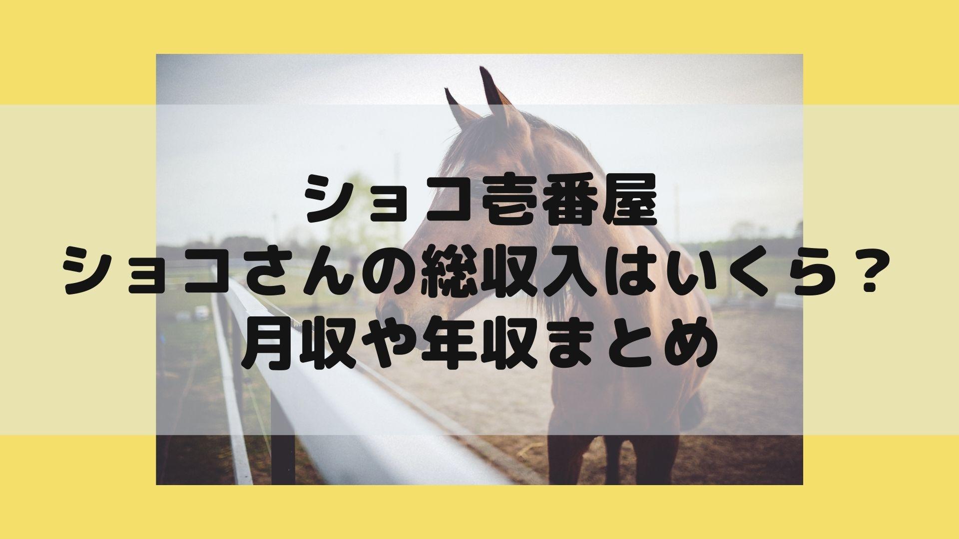ショコ壱番屋ショコさんの総収入はいくら?月収や年収まとめタイトル画像